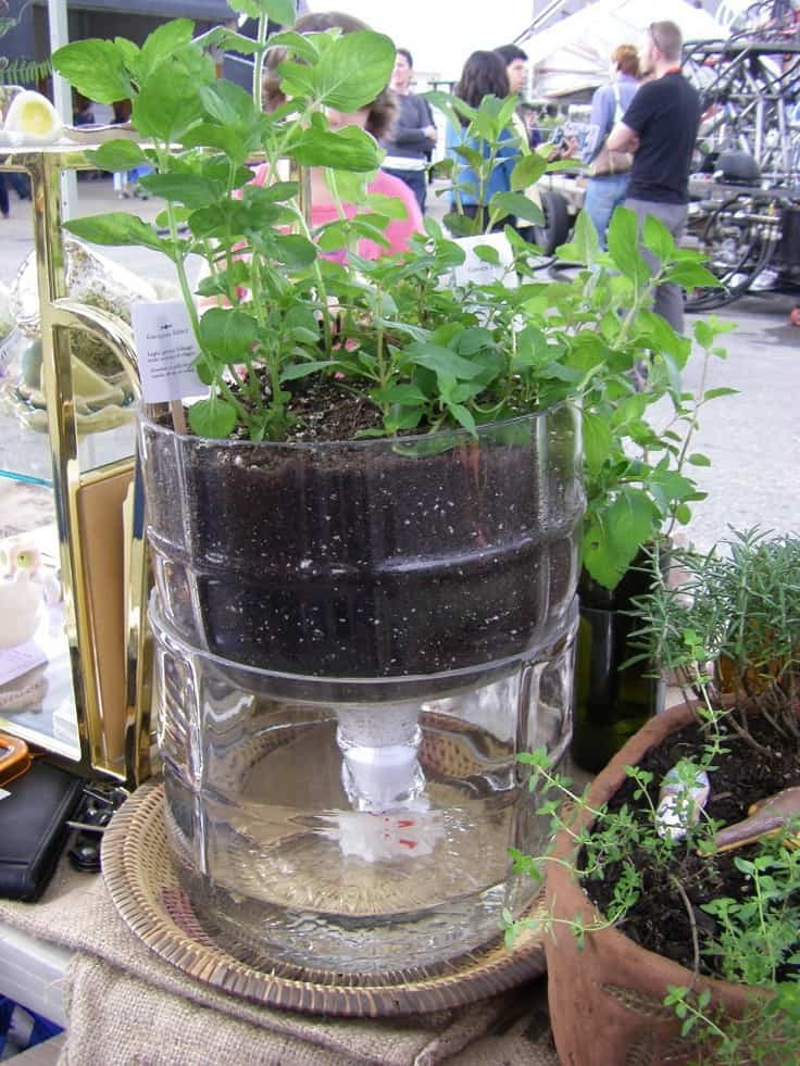 Best 9 Simple Self Watering Planters To Reduce Gardeners