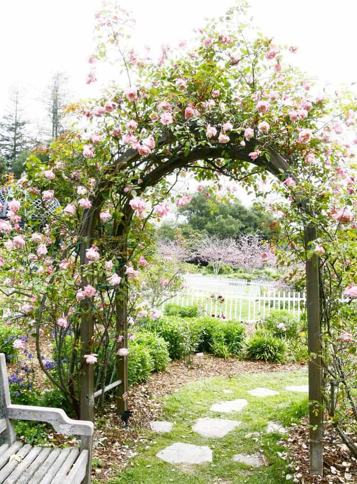 Beautiful rose archway into the garden