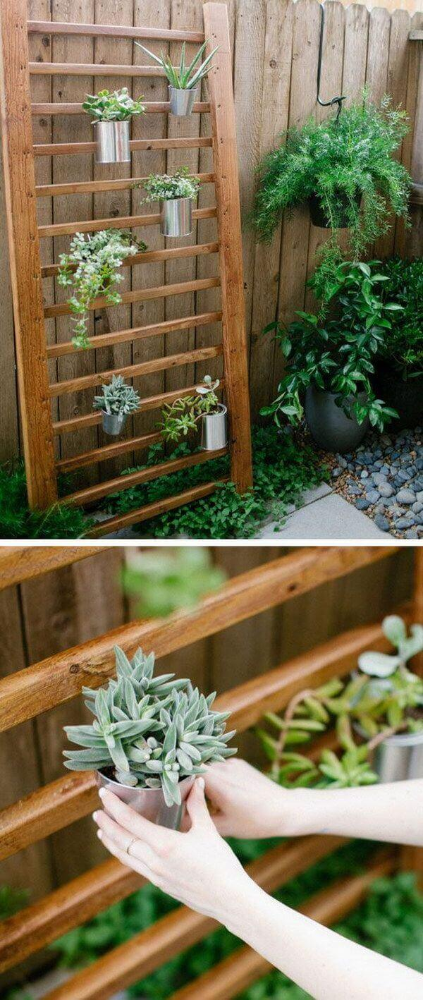 73 hanging planter ideas to try in all seasons