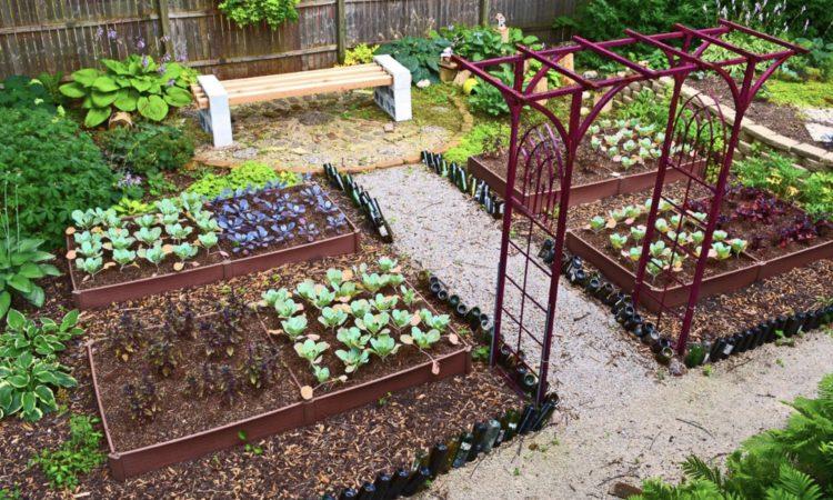 Best 20 Vegetable Garden Design Ideas, How To Start A Garden In Small Backyard