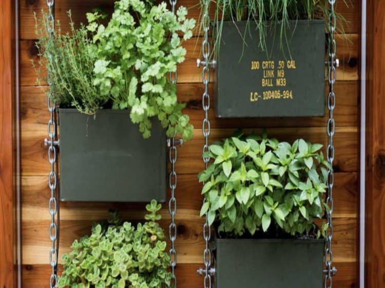 Diy Vertical Garden Ideas For Indoors And Outdoors Morflora