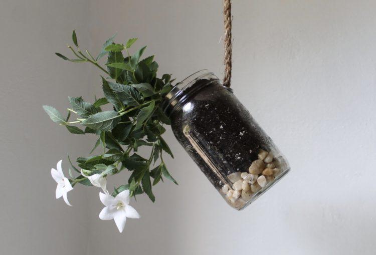 hanging planter ideas