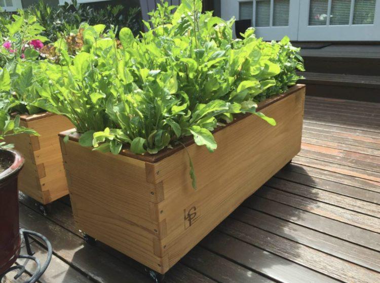 self-watering planters ideas