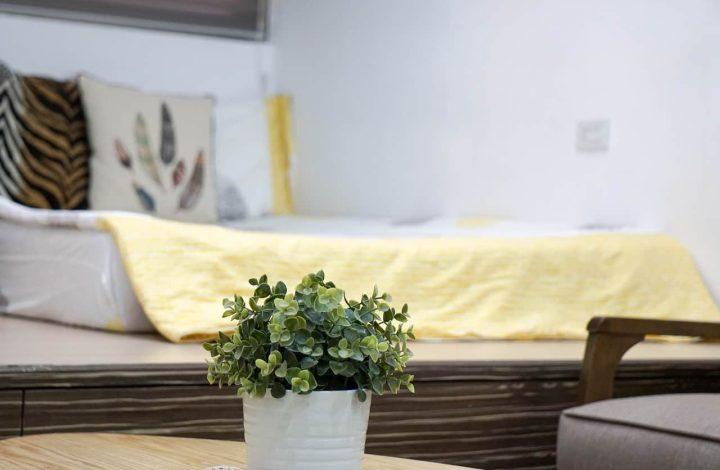 Plants for Bedroom