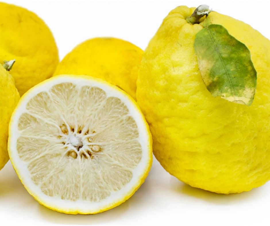 Ponderosa Lemons