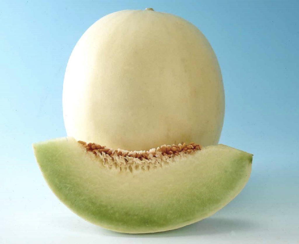 honey globe melon